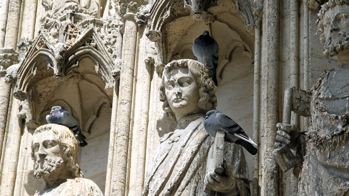 chartres kathedrale templer